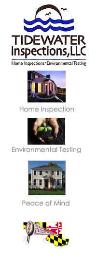 Tidewater inspection home inspection environmental for Tidewater homes llc